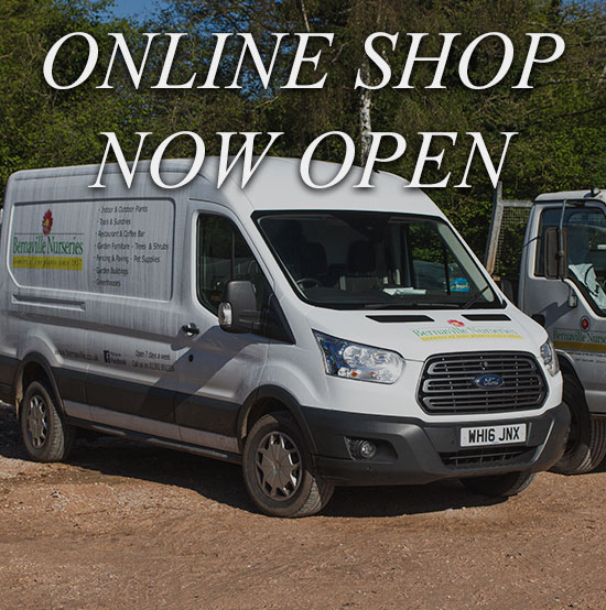 online-shop-now-open-2