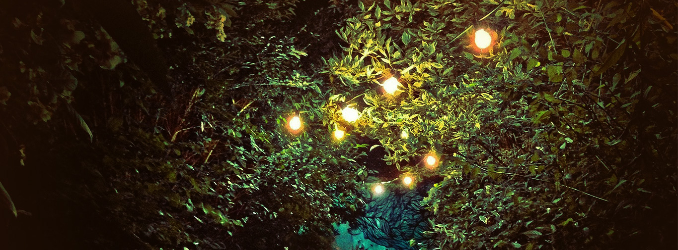 gardenlighting2017header2