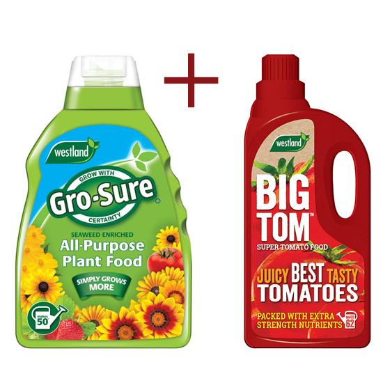 grosure-tomato