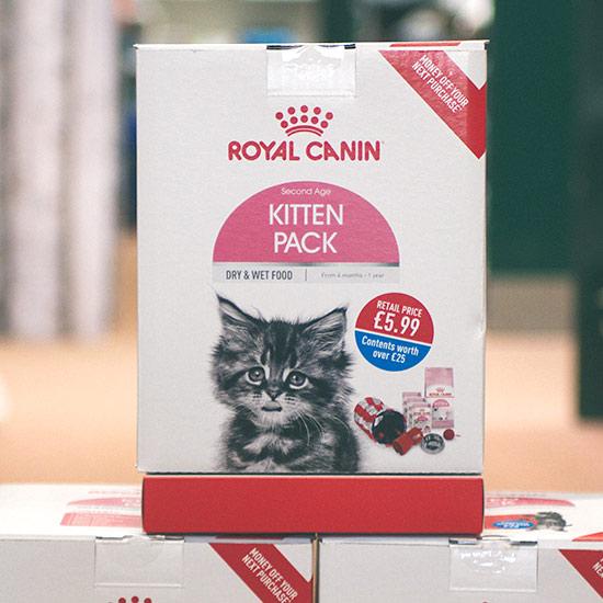 kitten-pack