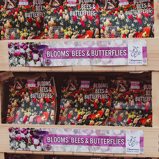 blooms-bees-butterfly